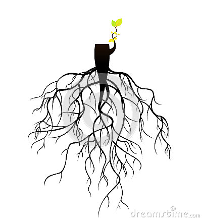 plant-reborn-tree-stub-roots-used-as-illustrations-41012755